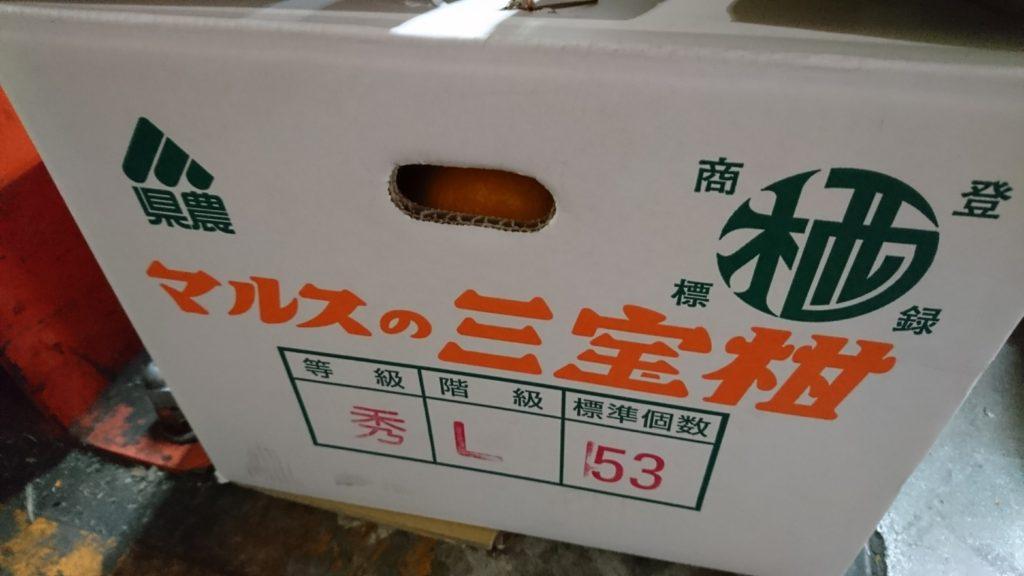 本日の目玉お買得商品!!ー和歌山県産 三宝柑 ー